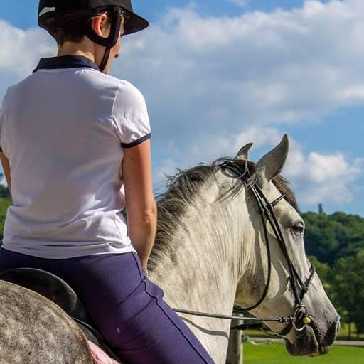 soigner son cheval au naturel avec des remèdes de grand-mère DIY et facile